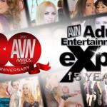 AVN-2013_728x380_01