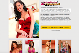 One of the best porn paid site to enjoy amazing MILF material