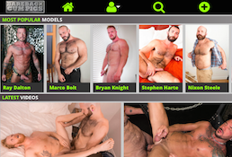 Recommended premium site offering stunning gay videos